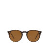 OLIVER PEOPLES O'MALLEY SUN OV5183S 166653