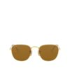 RAY-BAN FRANK RB3857 919633