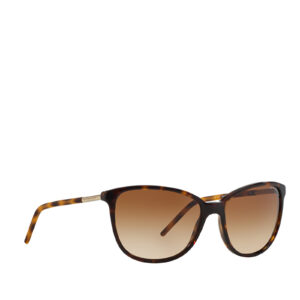 BURBERRY BE4180 300213